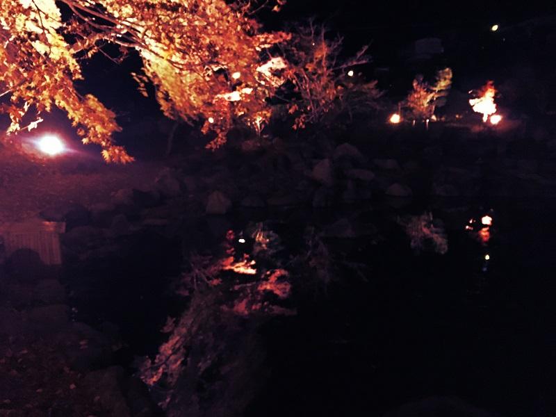 三春真照寺紅葉ライトアップ